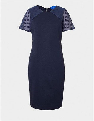 Winser London Hourglass Miracle Chiffon Sleeve Dress