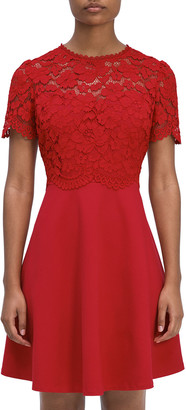 Rose Lace Bodice Ponte Dress