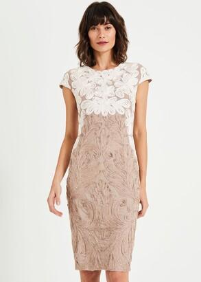 Phase Eight Catheleen Tapework Lace Dress