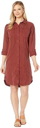 Prana Doryan Dress (Chalkboard) Women's Dress