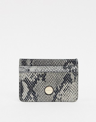 Paul Costelloe real leather snake card holder-Multi