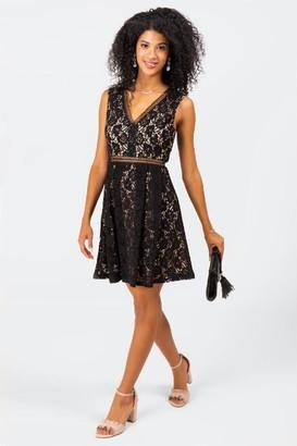francesca's Garner Lace V-Neck Dress - Black