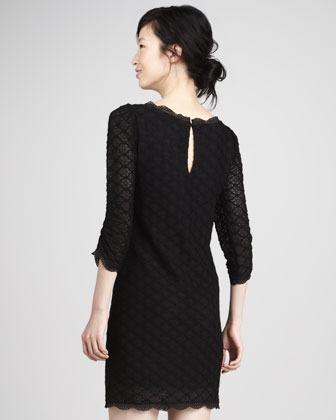 Joie Tesla Three-Quarter Sleeve Lace Dress