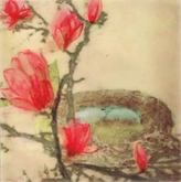 Robins Eggs Among Magnolias