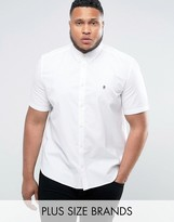 French Connection PLUS Oxford Shirt with Short Sleeves