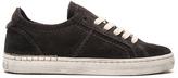 Dolce Vita Zalen Sneaker