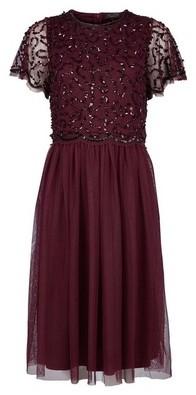 Dorothy Perkins Womens **Showcase Mulberry 'Thalia' Midi Dress