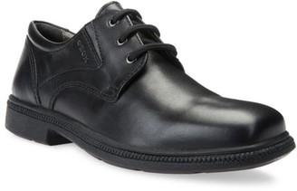 Geox Boy's Federico Leather Oxfords