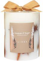 Linea Cinnamon & Ginger Botanical Candle