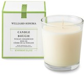 Williams-Sonoma Williams Sonoma Tuscan Cedarwood Candle