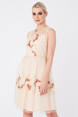 Little Mistress Hana Nude Floral-Embroidered Skater Dress