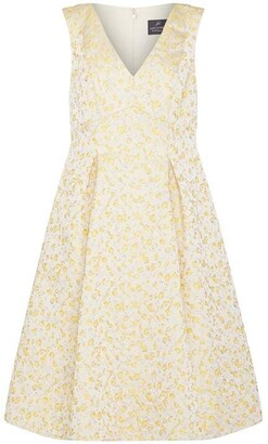 Adrianna Papell Jacquard Pleated Fit and Flare