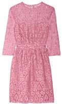 Moschino Cotton-blend lace dress