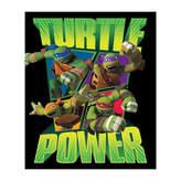 Asstd National Brand Ninja Turtles Throw
