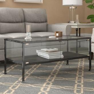 Three Posts Aldridge Terrarium Coffee Table