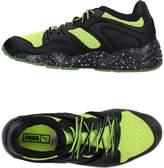 Puma Low-tops & sneakers - Item 11218889