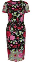 River Island Wopink Embroidered Floral Mesh Dress