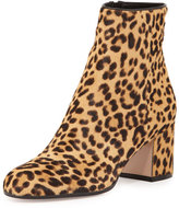 Leopard Ankle Boots - ShopStyle