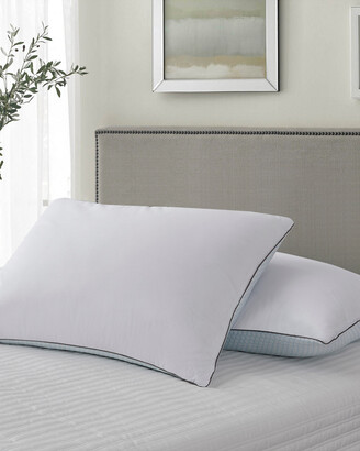 Kathy Ireland Set Of 2 Summer-Winter Goose Feather Pillows