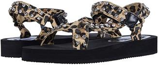 Steve Madden Henley-R Sport Sandal (Leopard) Women's Shoes