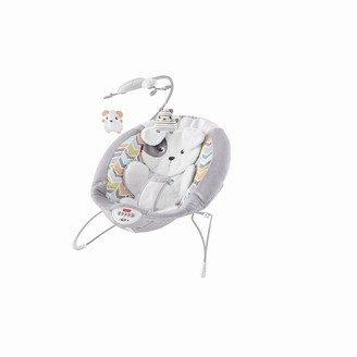 Fisher-Price Sweet Snugapuppy Dream Deluxe Bouncer