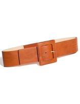 The Limited Covered Buckle Elastic Belt