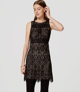 LOFT Tall Stained Glass Lace Dress