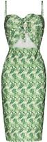 Adriana Degreas Dahlia print knee-length dress