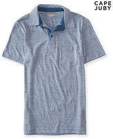 Aeropostale Mens Cape Juby Chambray Stripe Jersey Polo Shirt