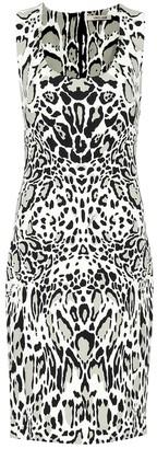 Roberto Cavalli Printed stretch crepe dress