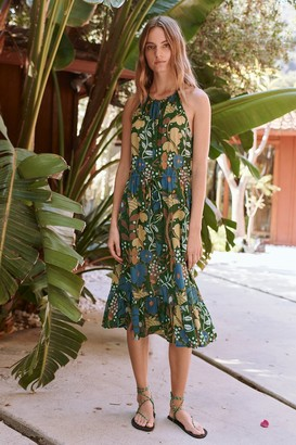 Velvet by Graham & Spencer Purl Floral Print Midi Dress