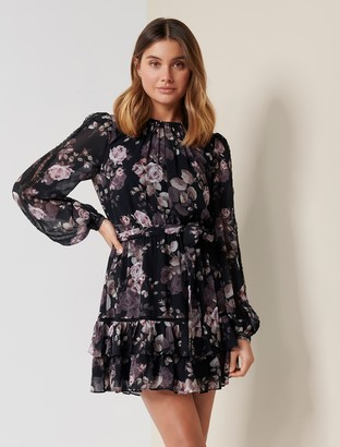 Ever New Kelsey Skater Dress