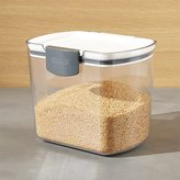 Crate & Barrel Progressive ® ProKeeper 1.5-Qt. Brown Sugar Storage Container