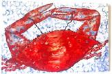 "My Island Red Crab Canvas Art, 16""x20"""