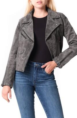 Blank NYC Vital Signs Suede Moto Jacket