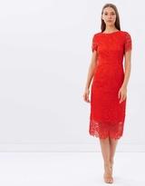 Warehouse Flower Lace Midi Dress