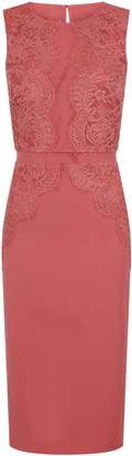 Dorothy Perkins Womens **Little Mistress Coral Lace Trim Bodycon Dress, Coral