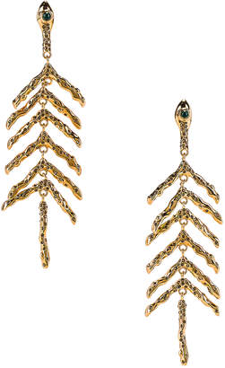 Chloé Fish Bone Earrings in Gold | FWRD