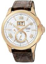 Citizen Eco drive Calibre 3100 LIMITED EDITION Perpetual Calender Sapphire Crystal Men's Watch