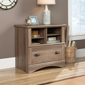 Beachcrest Home Pinellas 1 Drawer Lateral Filing Cabinet Color: Salt Oak