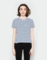 Amo Twist Tee in Blue Stripe