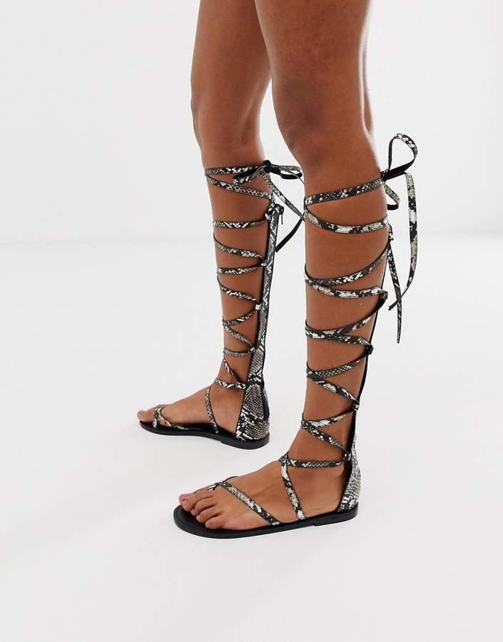 83c658648cf Design DESIGN Fireworks knee high gladiator flat sandals in snake print