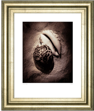 Laurèl Classy Art Cowrie by Wade