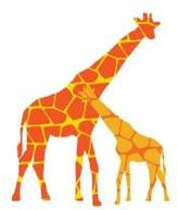 Avalisa Reticulated Giraffe Stretched Print