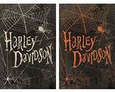 Harley-Davidson Halloween Spider House Flag