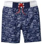 Crazy 8 Shark Swim Trunks