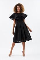 Coast Ruffle Shoulder Lace Skater Dress