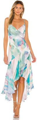 Parker Denver Dress