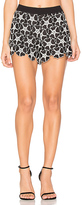 Alice + Olivia Amaris Lace Short in Black. - size 8 (also in )
