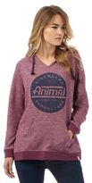 Animal Purple Graphic Print Hoody